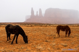 Monument-Valley-USA_JeanLucHauser.com-5.jpg