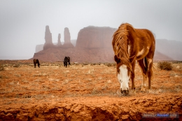 Monument-Valley-USA_JeanLucHauser.com-6.jpg